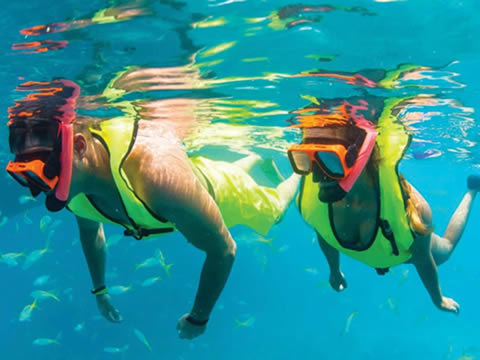 FULL DAY KEY WEST TOUR AND CORAL REEF SNORKELING WITH OPEN BAR