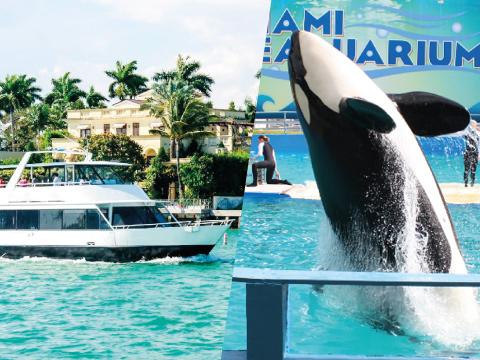 MIAMI BOAT TOUR + SEAQUARIUM